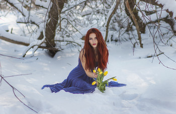 The Tale of the Snow Flowers / ...