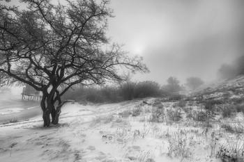 Черно-белая зима / Однажды в студенную зимнюю пору...
