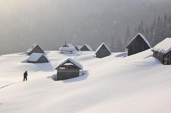 """Снега / Снега глубиной от пояса к груди. Мороз -19С ...- 15С. Февраль 2018 на полоныне Шеса. В некоторых местах, на сколах снежных пластов, можно было заглянуть в историю снегопадов, дождей и обледенений той зимы. Багатослойный пирог: рыхлый снег, лед 2-3 см, снова снег, лед. И так много раз. Хорошо, что последний слой обледенения держал человека. Приходилось барахтаться только в верхнем пухляке. Мороз, ветер и снега создавали очень суровую атмосферу. В голове проносился: """"Так люди и замерзают."""" В бинокль наблюдал с горы Старой следы схода лавин на Свидовця и Опреши. Местами склоны снесены вчистую от места обрывов карнизов и до буковых лесов."""