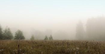 Туманная перспектива / Рассветы осени.
