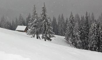 Снегопад / Карпаты, стаенки Озерной.