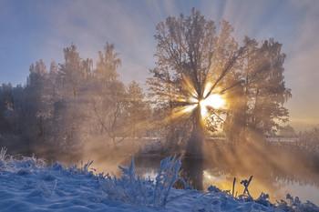 Зимняя зарисовка / ***