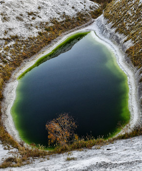 Зимняя зарисовка / Озеро. Горы. Дерево.