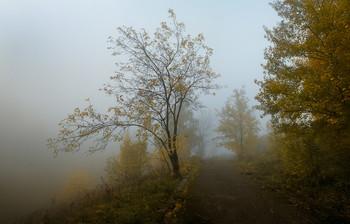 Одиночество. / Осень. Парк.