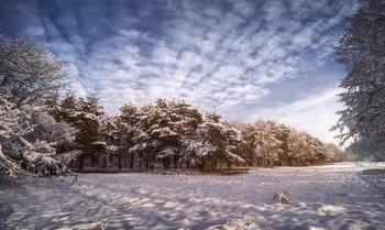 На лесной опушке / Зимним днём