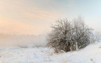 Под снежным убранством / Зимние туманы.