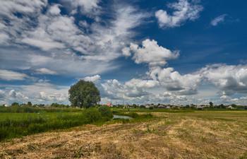 Летом за селом / летний пейзаж