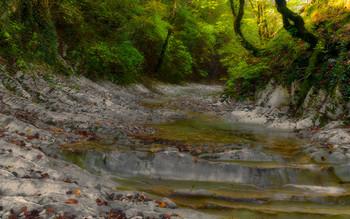 На речке Каменистой / ступени