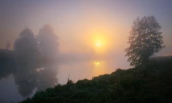 Тихое утро / Летняя река