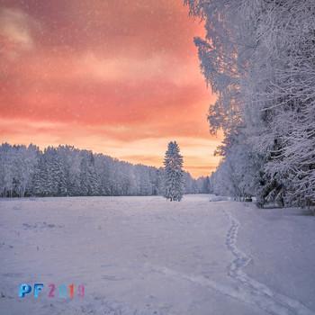 PF-2019 / С Новым годом,дорогие друзья и коллеги! Пусть он станет для Вас удачным во всех отношениях!!!