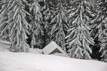 Стаенка / Карпаты засыпало снегом