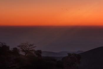 Утро нового года в пустыне / ***