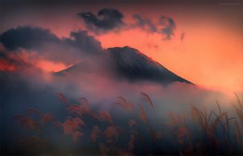 富士。 日本 / Всех с Новым годом друзья.  Больше вам впечатлений в познании окружающего мира и себя.  https://mikhaliuk.com/Japan-Phototour-Fuji-Sakura-flowering/