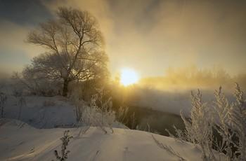 Светотень в морозный день / Зимние туманы.