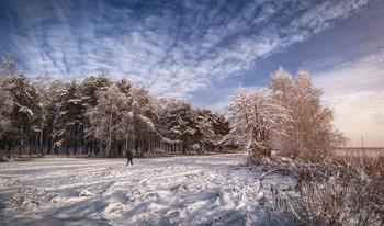 Зимние узоры / Ажурный морозный день