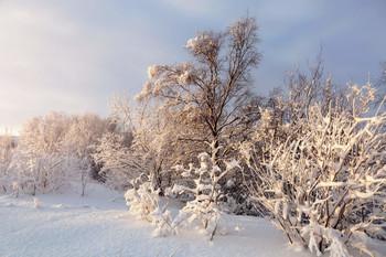 Прошлогодняя зима. / Крайний Север