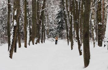 Рождественская лыжня / Катание на лыжах в лесопарке.