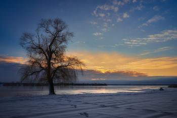 Зимний закат / Озеро Лиман Харьковская область. Январь 2019
