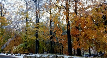 Дыхание зимы.. / Не жалуйся на холод окружающего мира, если не вложил в него ни капельки тепла....