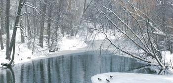 Зима на прудах в Кузьминках... / Незамерзшие пруды...