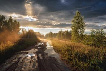 после летнего дождя / ***