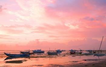 Розовый восход... / Утро на берегу океана