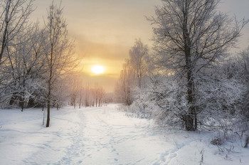 зимнее солнце / ***