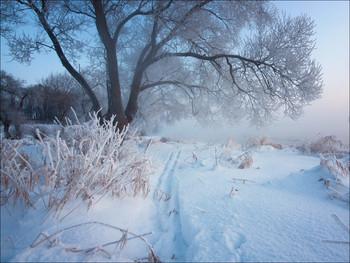 Морозными тропами / .............