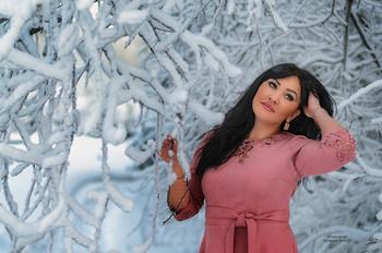 Красавица в снежных джунглях Сибири / Без описания