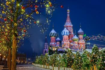 Покровский собор / Собор Василия Блаженного зимней ночью St. Basil's Cathedral on a winter night  www.sobio.ru