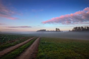 Дорога в дымку / Пейзаж Беларуси