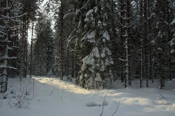 Pashkevich68 / Pashkevich68