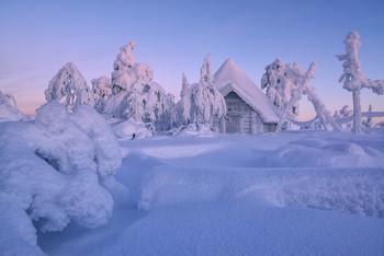 Зефирная страна... / Фото из фототура по Финляндии на Рождество 2019  Сейчас ищу человека на освободившееся место в путешествию по Кольскому полуострову в начале февраля 2019 года. Будем снимать подобные сюжеты уже по эту сторону границы :) И на всякий случай напомню, что уже можно планировать поездку в Финляндию на Рождество 2020 года В Шотландию в апреле есть одно место Все подробности туров на сайте http://phototourtravel.ru/
