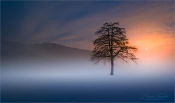 / Morgens an einen ruhigen Ort in der Obersteiermark.