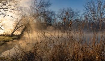 Утро туманное / Зима в Краснодаре