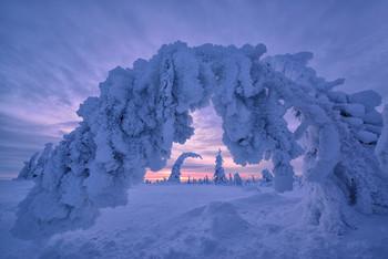 Ворота Зефирной страны... / Уже можно планировать поездку в Финляндию на Рождество 2020 года В Шотландию в апреле есть одно место Все подробности туров на сайте http://phototourtravel.ru/