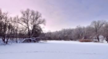 Иней и снег на Орлике / Иней на деревьях и свежий снег на Орлике