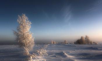 Зимний вечер в поле. / ***
