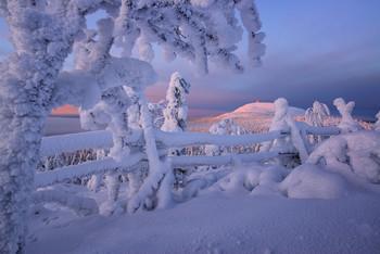 В гостях у зимы / Финляндия январь 2019 Уже можно планировать поездку в Финляндию на Рождество 2020 года Все подробности туров на сайте http://phototourtravel.ru/ Есть места на Ладогу в июне и сентябре и на Сегозеро. Обращайтесь