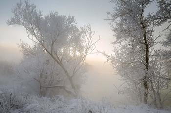 Хрустальное утро / Зимние туманы.