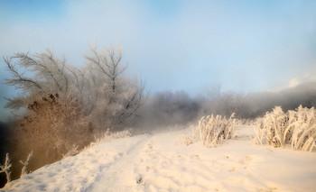 Морозная стёжка- дорожка / Январские туманы.