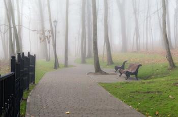 Утренний парк / Ноябрьские туманы.