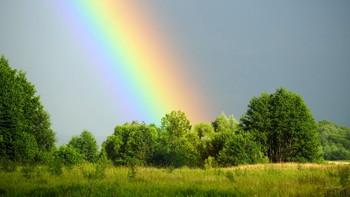 После дождя. / Собирали полевую клубнику, прошёл дождь и появилась радуга.