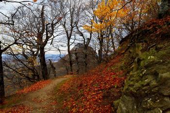 Осенние тропы........ / Железноводск. Октябрь