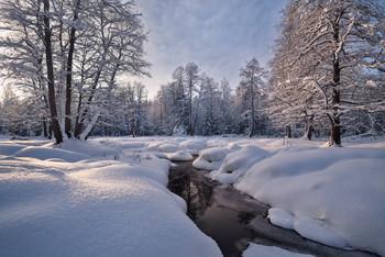в зимнем лесу / ***