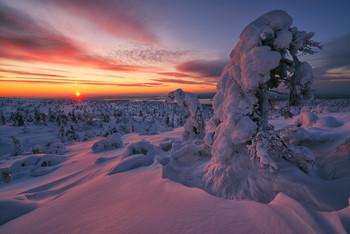 Февральская стужа / Холодный теплый вечерок :)