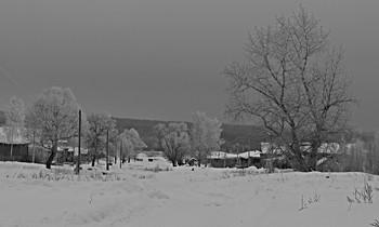 Морозный февраль. / Ч/б февраль.