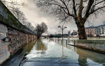 Наводнение. / Париж,зима 2019