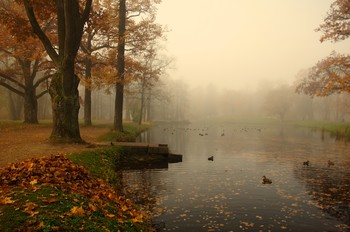 Осень... / Александровский парк...