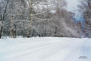 Первый день весны...))) / Повсюду капель. Это пришёл к нам март - первый месяц весны. Под тёплыми и ласковыми лучами солнце тает снег, просыпается после зимнего сна природа.